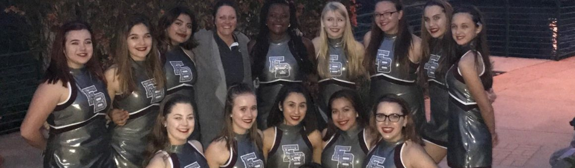 image 2016-2017 Stingline Dance Team