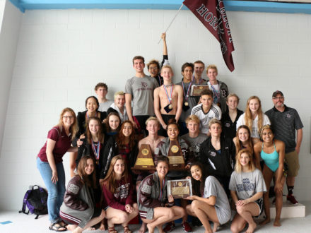 picture 2018 Swim Team
