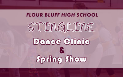 Stingline Dance Clinic Spring dance clinic and spring show graphic