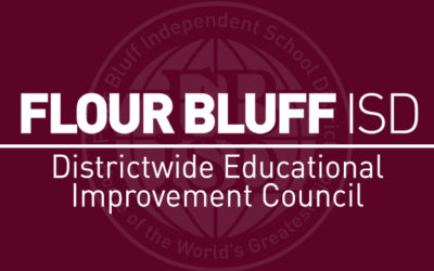district wide educational improvement council image